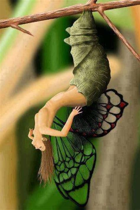tale of us tattoo 85 best fairy wings images on pinterest drawings fairy