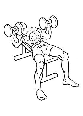bench press routine for mass 17 best ideas about chest exercises for mass on pinterest