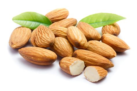 healthy fats top 10 top 10 healthy food to reduce belly naturally