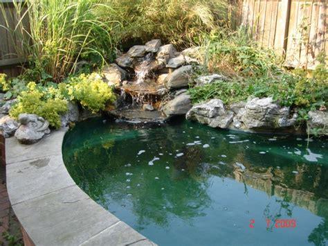 Clean Backyard Pond by Pond Clean Koi Water Garden