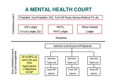 mental health court mental health appeals courts or tribunals lecture