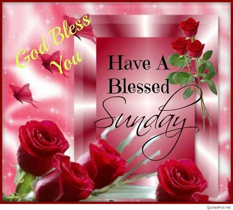 sunday images happy sunday morning cards pictures wallpapers hd