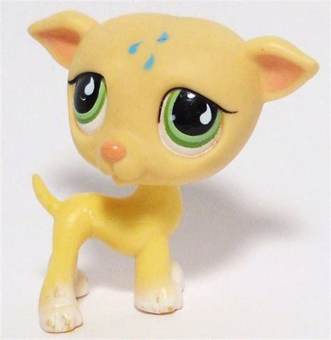 littlest pet shop dogs littlest pet shop greyhound 875 green