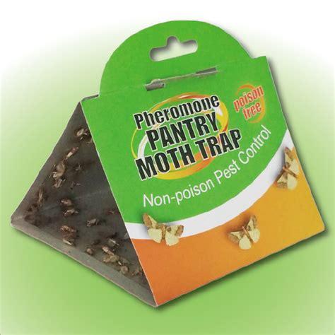 Pheromone Pantry Moth Traps by Moth Trap View Pantry Moth Glue Trap Sanli Product Details From Dalian Sanli Shodoku Co Ltd