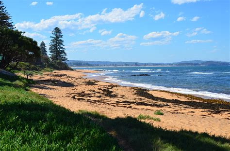 northern beaches reef manly northern beaches australia