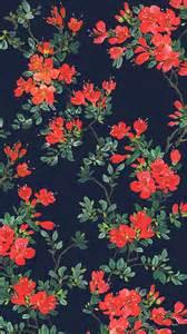 wallpaper floral best 20 flower iphone wallpaper ideas on pinterest