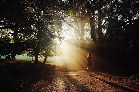 morning light could be key to leaner physique study finds