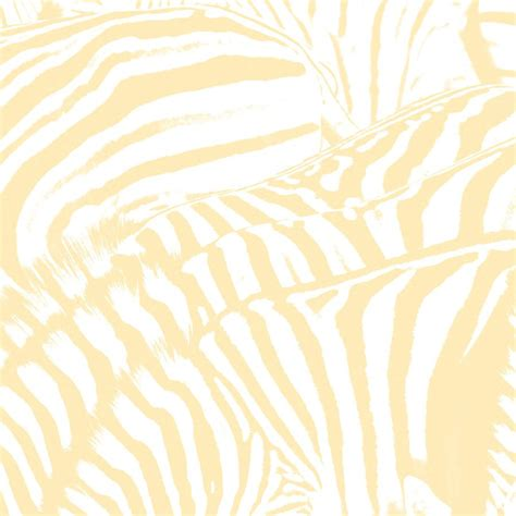 zebra house beach house zebra lyrics genius lyrics