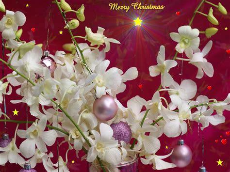 free desktop backgrounds christmas 2017 grasscloth wallpaper christmas free desktop wallpaper 2017 grasscloth wallpaper