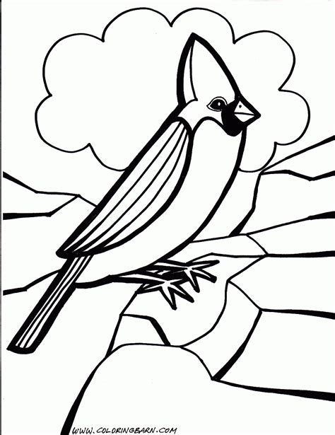 Different Birds Coloring Pages Coloring Home Different Coloring Pages