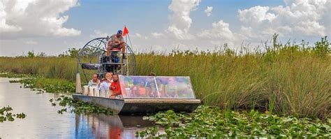 orlando everglades airboat tour and wildlife wild florida airboats and gator park airboat tours and