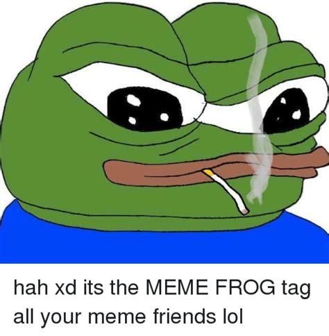 Frog And Toad Meme - 25 best memes about meme frog meme frog memes