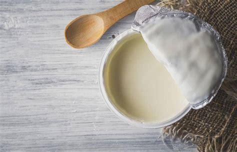 cucinare con lo yogurt cosa cucinare con lo yogurt 5 ricette facili e