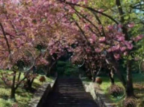 giardini di marzo chords i giardini di marzo lucio battisti remix cover chords
