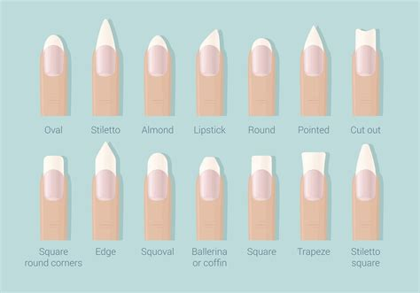 8 Nail Shapes And How To Choose The One For You by The Ultimate Guide To Nail Shapes Ask The Experts