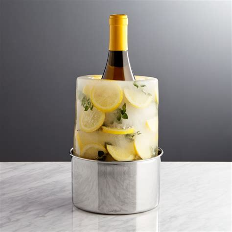 ice moldwine bottle chiller crate  barrel
