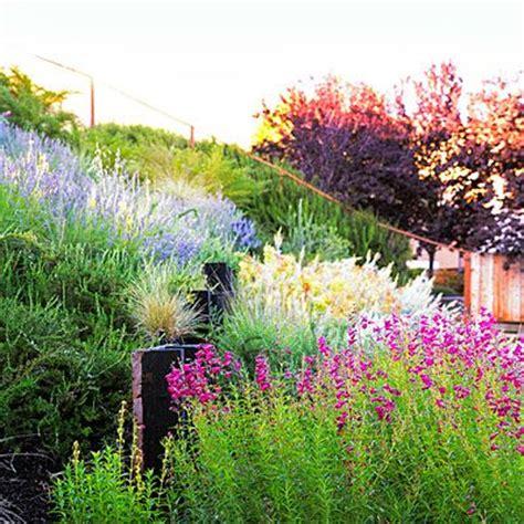 landscaping a hillside backyard best 25 landscaping a slope ideas on pinterest