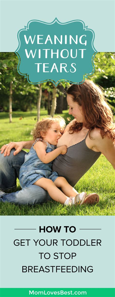 how to your to stop weaning without tears how to stop a toddler