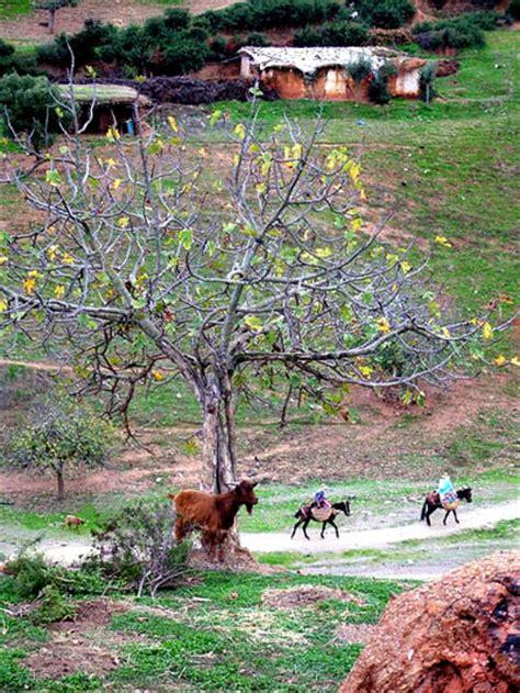 Historic Landscape Unesco Definition The Definition Of Cultural Landscape Med O Med