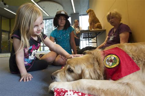 reading to dogs children read to at vancouver community library the columbian