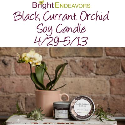 Candle Giveaway - homeschool insights bright endeavors soy candle giveaway