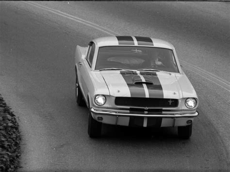 ford shelby gt350 mustang 1964 car picture 07 of