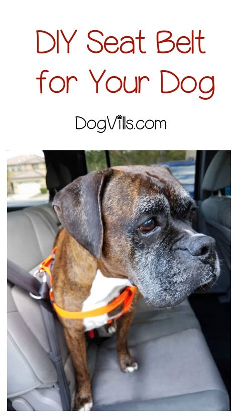 puppy seat belt diy seat belt for keeping fido safe in the car with dogvills
