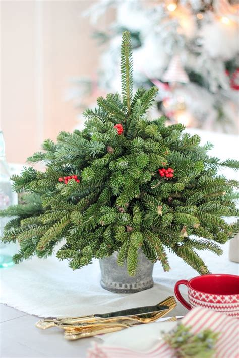 30 mini christmas trees decoration ideas christmas