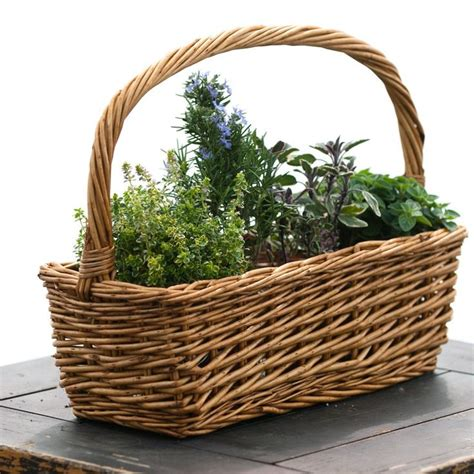 Herb Garden Gift Ideas S Day Herb Garden Gift Basket And Unique Gift Ideas For