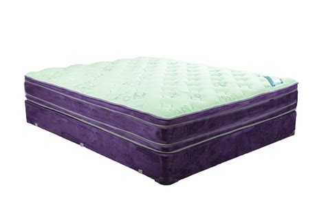 queen pillow top bed saturn double euro top queen mattress and boxspring