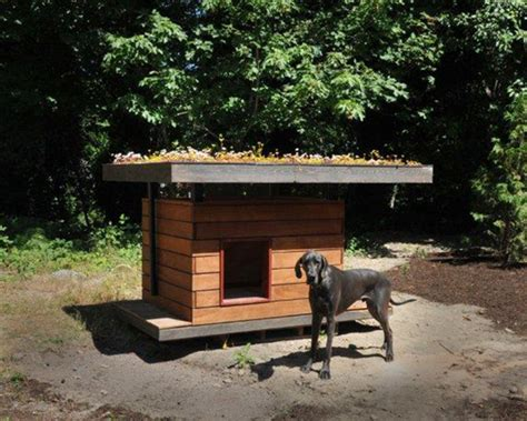 sty building his dog house an eco doghouse made from recycled building materials coates design sustainability blog