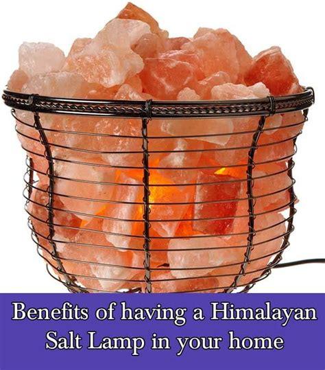 himalayan salt l benefits myth 14 best himalayan salt art images on pinterest salt art
