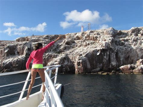 baja mexico boats baja boat adventures la paz all you need to know