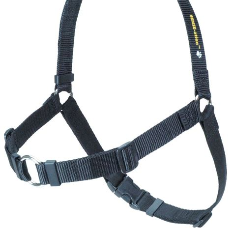 best no pull harness your guide to the best no pull harness in 2018 us bones
