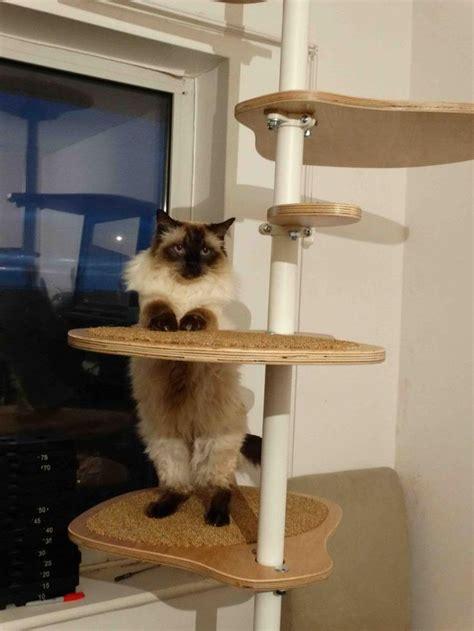 Stolmen Bed Hack 17 Best Images About Inspirace Ikea Cat Stolmen On