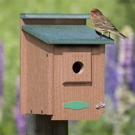 duncraft com duncraft eco protected songbird house