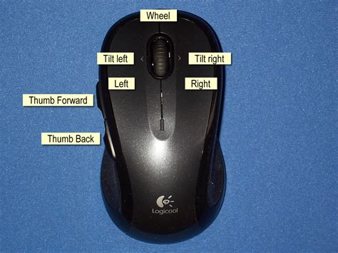 Mouse Logitech M510 product review logitech logicool wireless mouse m510 machouse a world of not windows