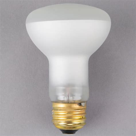 Carnival King Pmbulb 60w Replacement Bulb For Pm470 And
