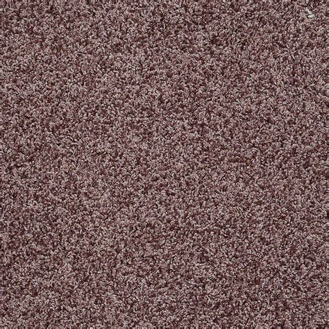 home decorators collection carpet sle city in