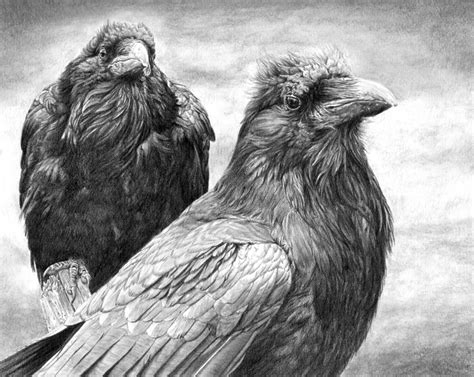 my travels with huginn and muninn xenofiles