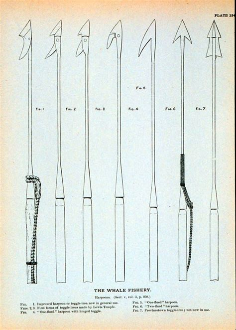 harpoon tattoo exles of harpoons they would use in moby roth