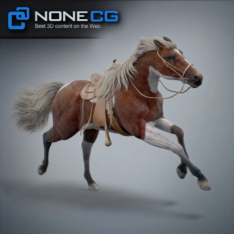 Best Quality Resume Paper by Rigs Animated Horse 3d Model By Nonecg Thinking Animation