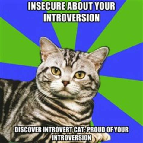 Introvert Meme - introvert cat introvert i thought it was just me