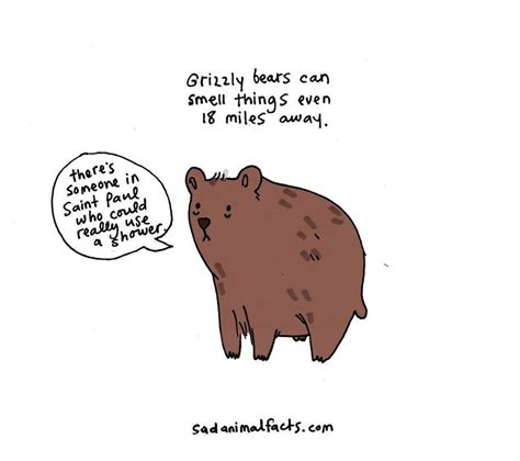 sad animal facts sad animal facts are the cutest way to ruin your day