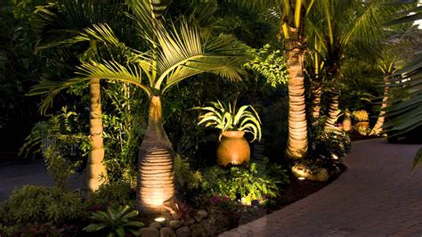 palm tree xmas lights throughout lighting ideas