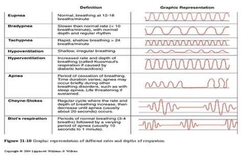 breathing pattern types types of respiratory patterns pictures to pin on pinterest