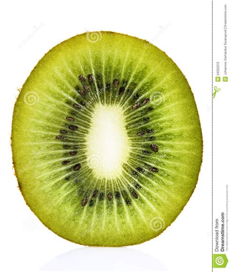 fruit section kiwi fruit cross section stock photography image 24322372