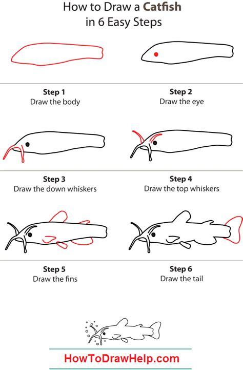draw  catfish step  step drawings catfish