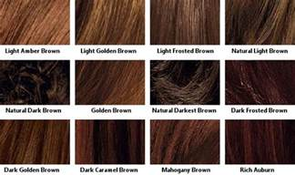 brown hair color chart brown hair color chart coloring hair and hair