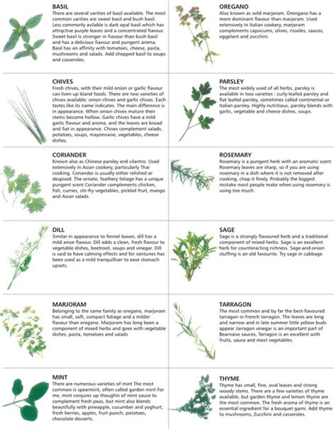 herbs chart it s thyme for some tropical fruit salad